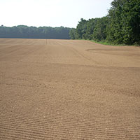 Quality Screened Topsoil